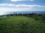 Kohala Ranch after the rains